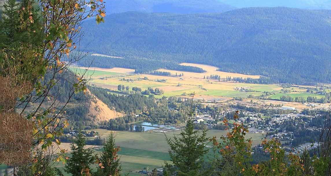 Lumby Homes for Sale